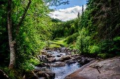 Río que fluye sobre rocas hacia bosque Fotos de archivo