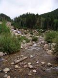 Río que se ejecuta con rocoso Imágenes de archivo libres de regalías