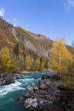 Río rápido de la montaña Fotografía de archivo libre de regalías