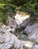 Río rápido de la montaña en la sombra de las paredes de un barranco gris y de árboles con perpektive Fotos de archivo