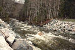Río rápido del agua blanca Imagen de archivo libre de regalías