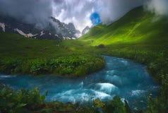 Río rápido hermoso que fluye en la luz de la mañana, brumosa, estación de verano imagen de archivo libre de regalías