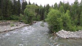 Río rápido, visión desde el puente almacen de video