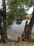 Río reflexivo Imagen de archivo libre de regalías