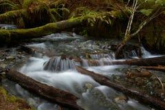 Río reservado Fotos de archivo