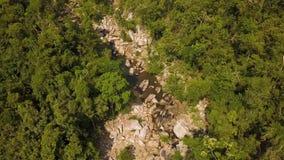 Río rocoso de la cantidad aérea en paisaje hermoso del bosque verde del río y de la selva tropical de la montaña del abejón del v almacen de video