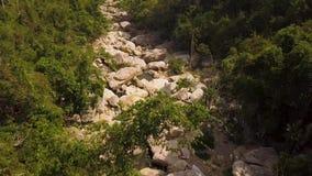 Río rocoso y paisaje verde de la antena del bosque Río de la montaña con la opinión grande del abejón de las piedras Paisaje natu metrajes