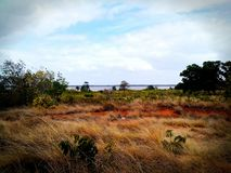río rural el Orinoco del paisaje Fotos de archivo
