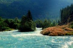 Río salmonero Loelva, Noruega Fotografía de archivo libre de regalías
