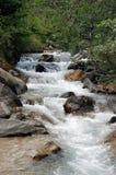 Río salvaje Imagen de archivo libre de regalías