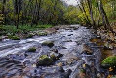 Río salvaje Foto de archivo libre de regalías
