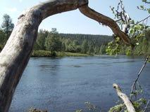 Río salvaje fotos de archivo