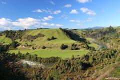 Río salvaje con las colinas verdes en Nueva Zelanda Imagenes de archivo