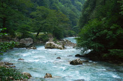 Río salvaje de la montaña Foto de archivo
