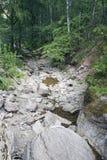 Río salvaje de la montaña Imágenes de archivo libres de regalías