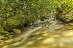 Río salvaje de la montaña Imagenes de archivo