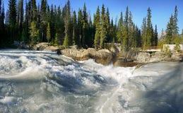 Río salvaje de la montaña, chorro de agua del poder Imagen de archivo