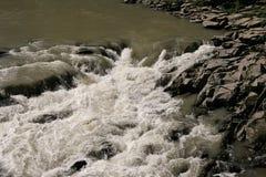 Río salvaje de la montaña en Cárpatos Imagen de archivo libre de regalías