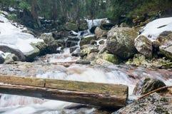 Río salvaje de la montaña, orilla rocosa en invierno Fotografía de archivo