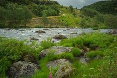 Río salvaje en parque nacional, Imagen de archivo