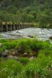 Río salvaje en parque nacional Foto de archivo libre de regalías