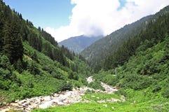 Río salvaje en un valle Imágenes de archivo libres de regalías