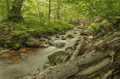 """Río salvaje - fondo relajante del †de la naturaleza """", región de Mariovo, Macedonia Imágenes de archivo libres de regalías"""