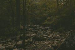 Río seco imagenes de archivo