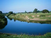 Río Severn Vyrnwy Confluence Shropshire England Foto de archivo libre de regalías