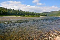 Río Shchugor en el taiga de la montaña de los Urales septentrionales imágenes de archivo libres de regalías