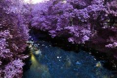 Río surrealista Imagenes de archivo