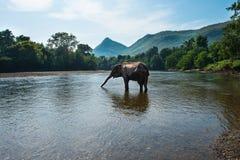Río Tailandia de Kwai Imagen de archivo libre de regalías