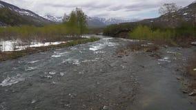 Río temprano de la montaña del paisaje de la primavera, apenas árboles florecientes a lo largo de las orillas del río almacen de metraje de vídeo
