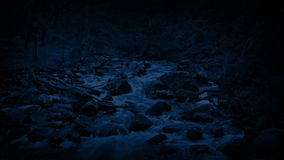 Río a través de Forest At Night metrajes