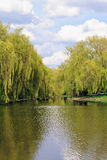Río a través del parque Imágenes de archivo libres de regalías