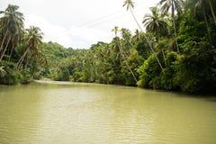 Río tropical de Loboc Imagen de archivo libre de regalías