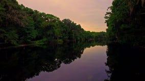Río tropical del bosque en la puesta del sol en una tarde reservada almacen de metraje de vídeo