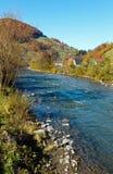 Río Ucrania de la montaña de Autumn Carpathian Fotografía de archivo