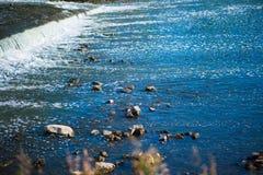 Río vivo salvaje con las rocas y los rápidos Fotos de archivo