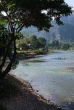 Río y árbol Imagen de archivo libre de regalías
