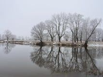 Río y árboles blancos hermosos en helada, Lituania Fotografía de archivo libre de regalías