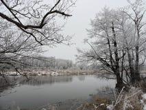 Río y árboles blancos hermosos en helada, Lituania Foto de archivo libre de regalías