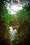Río y árboles con el Sun y la Hawaii admitida nubes Imagen de archivo