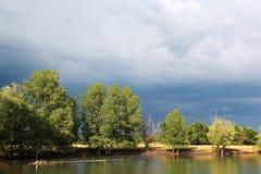Río y bosque Fotografía de archivo