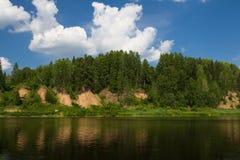 Río y bosque Foto de archivo