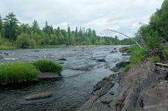 Río y bosque en Jay Cooke State Park Imágenes de archivo libres de regalías