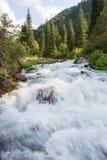 Río y bosque en montañas Foto de archivo
