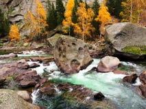 Río y Forest In Autumn colorido Fotografía de archivo