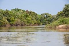 Río y Riverbanks pintorescos de la selva Foto de archivo