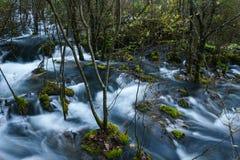 Ríos y lagos en el valle Jiuzhaigou Fotos de archivo libres de regalías